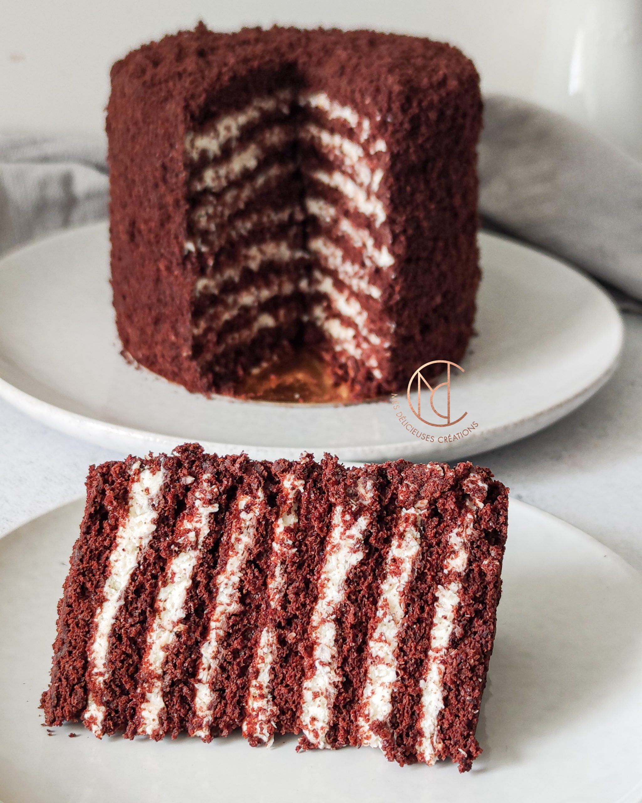 Moelleux-chocolat-creme-coco